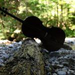 Un violoncelle en vacances
